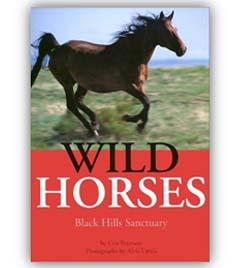 Cris Peterson Wild Horses